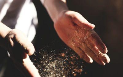 Jeder kann kochen. Versprochen!